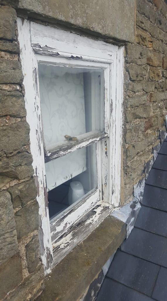 window frame with peeling paint